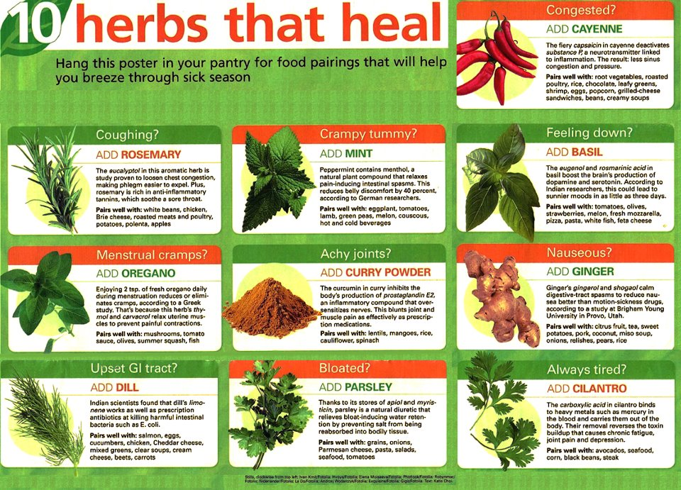 Gallery for gt healing herbs